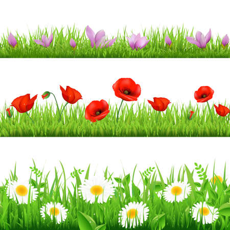 animal border: 3 Flower Border With Grass, Isolated On White Background, Vector Illustration
