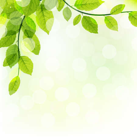 Green Leaves Background With Bokeh, Vector Illustration
