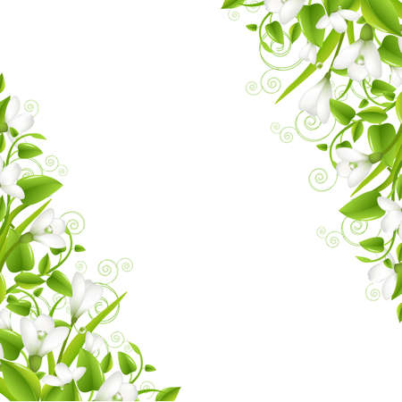 Border Snowdrops With Leaf, Isolated On White Background, Vector Illustration Stock Vector - 13358389