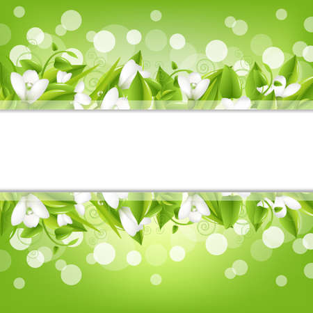 snowdrop: Border With Snowdrops And Bokeh, Vector Illustration Illustration