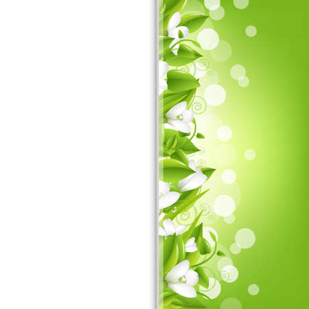 snowdrop: Border With Snowdrops And Leaf, Vector Illustration