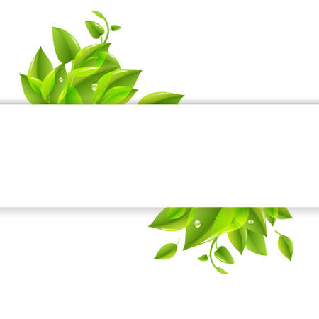 natural paper: Paper With Green Leaves Poster, Isolated On White Background, Vector Illustration