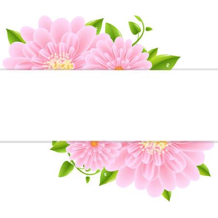gerbera daisy: Papel Con Rosa Gerber y las hojas, ilustraci�n vectorial Vectores