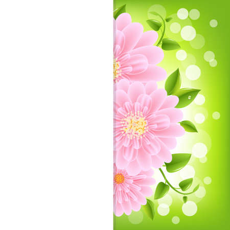 camomiles macro: Paper With Pink Gerber And Bokeh, Vector Illustration