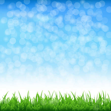 Landscape With Grass And Bokeh Vector