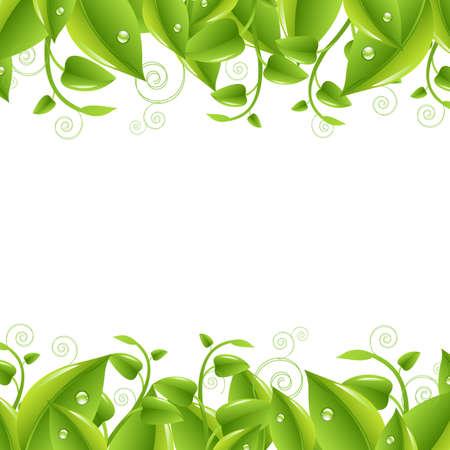식물상: 흰색 배경에 잎이 테두리, 절연, 벡터 일러스트 레이 션