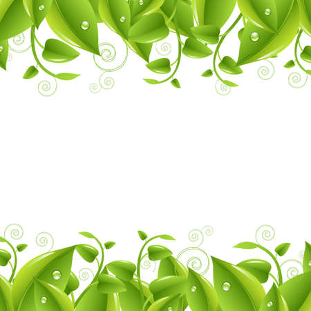 green leaves border: 2 Borders With Leaves, Isolated On White Background, Vector Illustration