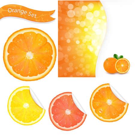 exotic fruit: Big Orange Set, Isolated On White Background, Vector Illustration Illustration