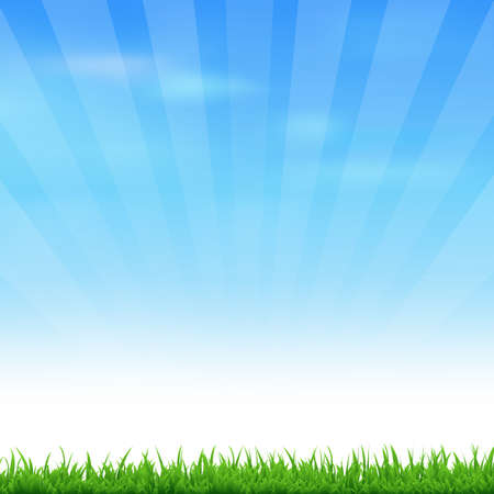 Landscape With Grass And Sky, Vector Illustration Vector