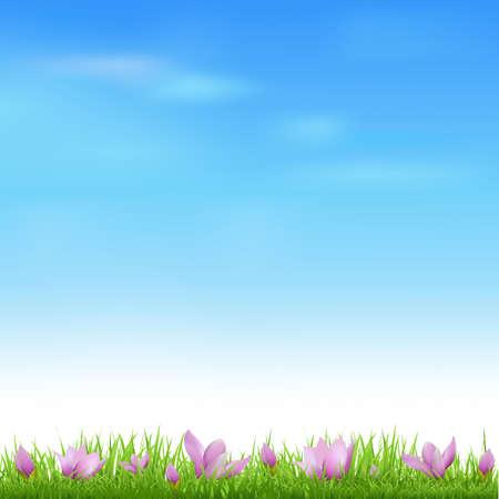 krokus: Landschap Met Gras En Crocus, Vector Illustratie Stock Illustratie