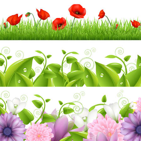 poppy leaf: Borders With Flowers And Grass Illustration