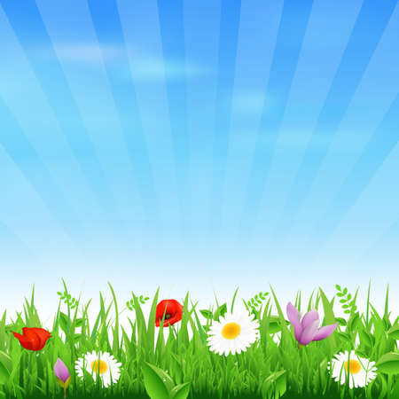 Sunburst Background With Flower And Grass Stock Vector - 13825322