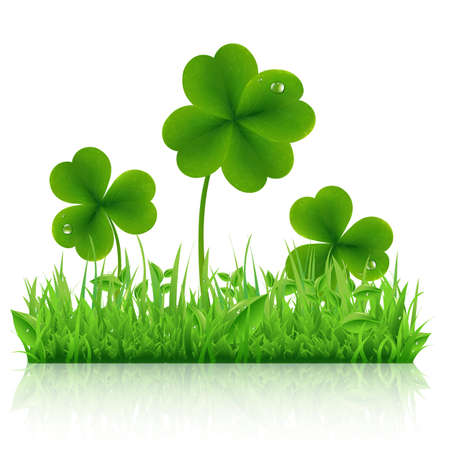4 leaf: Green Grass With Clover, Isolated On White Background, Vector Illustration