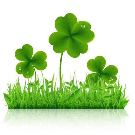 buena suerte: Hierba verde con el trébol, aislado en fondo blanco, ilustración vectorial