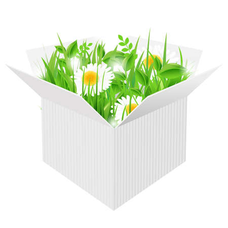 White Box With Grass, Isolated On White Background, Vector Illustration Stock Vector - 14442149