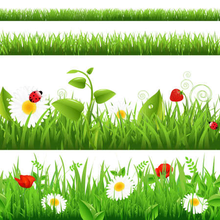 Grass Backgrounds Set With Flowers And Ladybug Illustration Vector