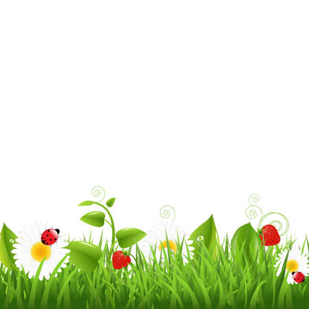 grass blades: Grass Border With Ladybug And Leaf Illustration