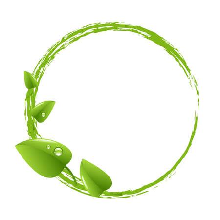 природа: Зеленый шар и зеленые листья, изолированных на белом фоне иллюстрации Иллюстрация