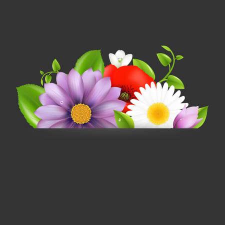 Summer Flowers With Divider On Dark Illustration Stock Vector - 15153118
