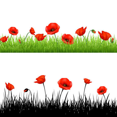 Border With Grass And Poppy,Illustration Vector