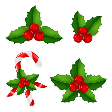candy cane: Christmas Holly Berry Set With Gradient Mesh, Vector Illustration Illustration