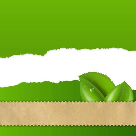fragmentary: Hoja Verde Con Papel fragmentario con malla de degradado, ilustraci�n vectorial