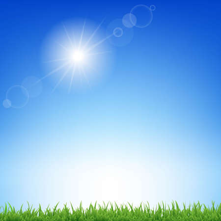 Sunburst And Grass With Gradient Mesh, Vector Illustration Vector