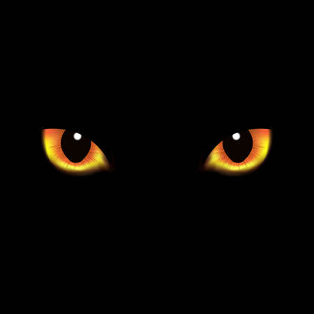 night vision: Cat Eyes, With Gradient Mesh, Vector Illustration