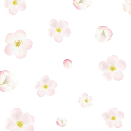 stamen: Apple Tree Flowers Background, With Gradient Mesh, Vector Illustration Illustration