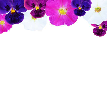 florescence: Flowers Card, With Gradient Mesh Illustration