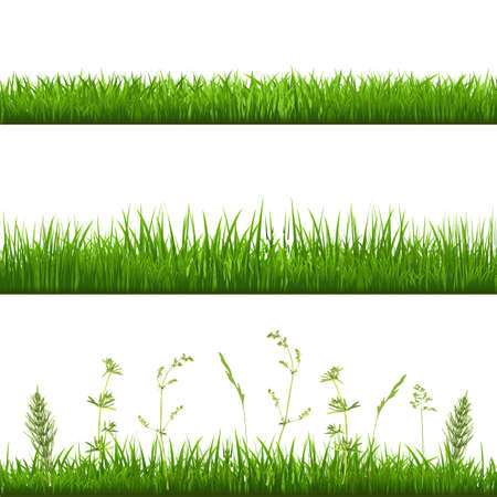 grass blades: Grass Borders, With Gradient Mesh Illustration