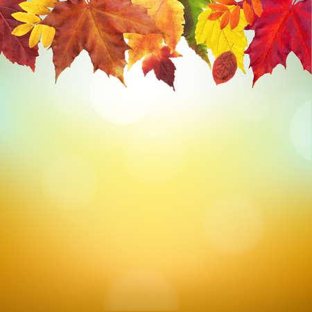 Autumn Border With Gradient Mesh, Vector Illustration Vector
