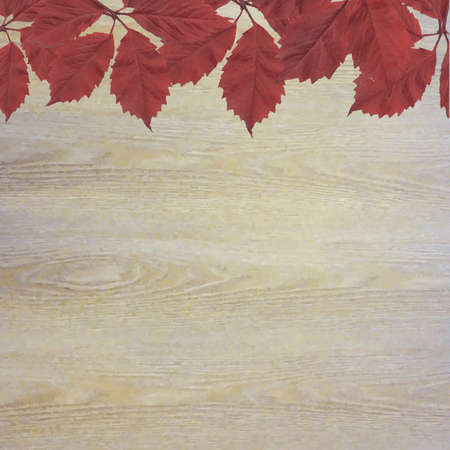 aronia: Wooden Background With Red Leaves, Vector Illustration