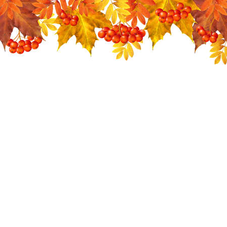 raceme: Autumn Border With Leaves With Gradient Mesh, Vector Illustration Illustration