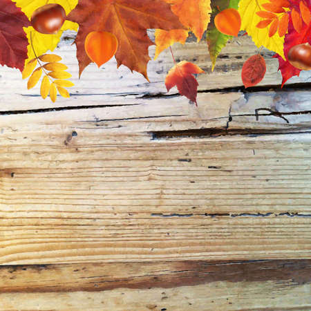 wooden vector mesh: Autumn Border With Wooden Background With Gradient Mesh, Vector Illustration
