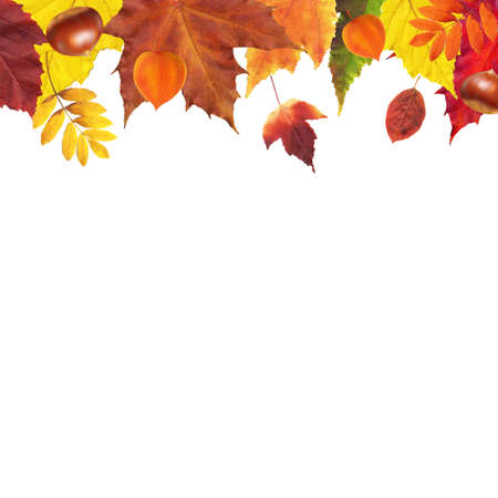 ashberry: Autumn Leaves Border With Gradient Mesh, Vector Illustration