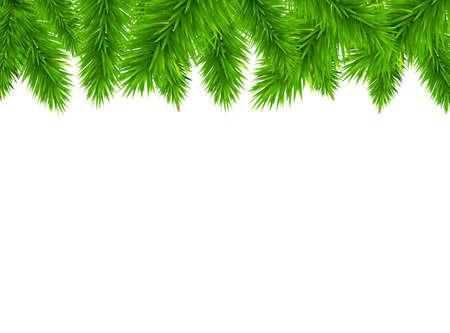fir twig: Fir Tree Border, Vector Illustration Illustration