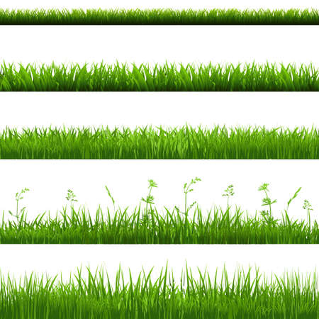 grass blades: Grass Borders Big Set With Gradient Mesh