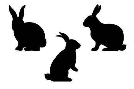chinese astrology: Rabbits, Vector Illustration Illustration