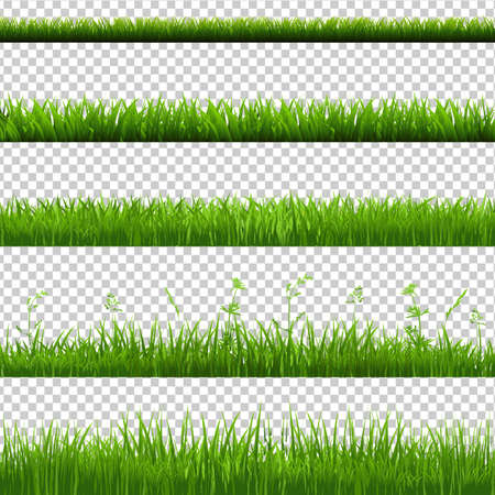 Green Grass Borders Big Set, Isolated on Transparent Background, Vector Illustration Vettoriali