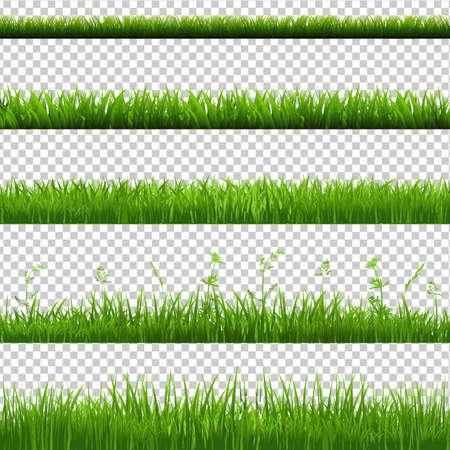 Green Grass graniczny Big zestaw, samodzielnie na przezroczystym tle, ilustracji wektorowych