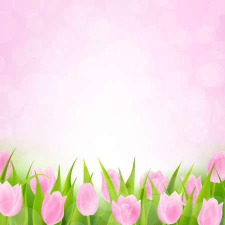 Printemps Tulipe rose avec filet de dégradé, vecteur Illustration Vecteurs