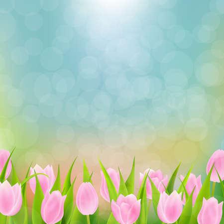 Spring Pink Flowers Tulip With Gradient Mesh, Vector Illustration Illustration