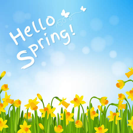 Hello Spring Poster With Narcissus With Gradient Mesh, Vector Illustration
