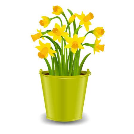 Narcissus in Pot met Gradiëntnetwerk, Vectorillustratie
