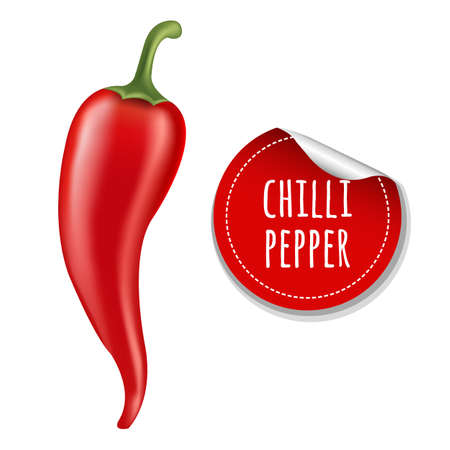 organic peppers sign: Hot Chilli Pepper With Gradient Mesh, Vector Illustration