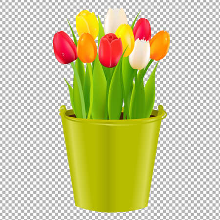 Tulip In Pot With Gradient Mesh, Vector Illustration