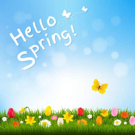 Hello Spring With Gradient Mesh, Vector Illustration Illustration