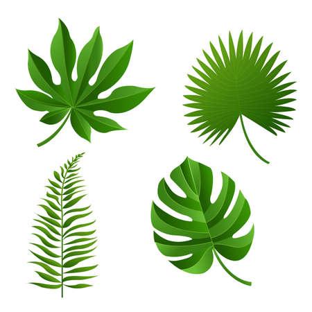 Feuille tropicale, Illustration vectorielle, Avec mailles dégradées