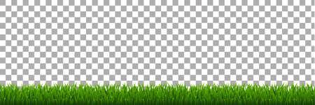 green environment: Green Grass, Vector Illustration